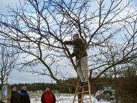 Mensch und Baum 1