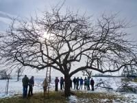 Mensch und Baum 2