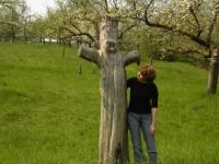 Mensch und Baum 6